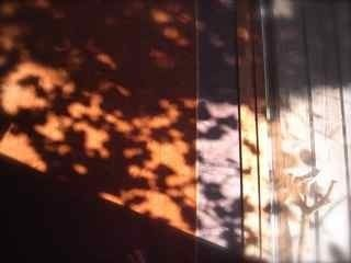 冬のため 太陽熱2.jpg